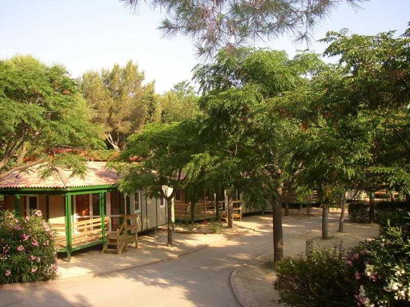 Apartamentos Vilanova Park