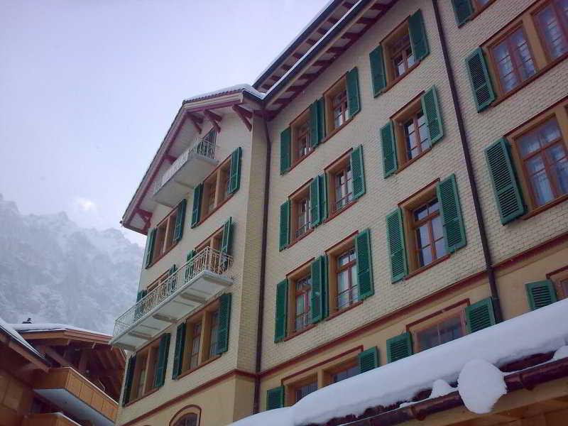 Falken in Swiss Alps, Switzerland