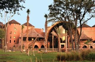 Disney's Animal Kingdom Lodge image 9