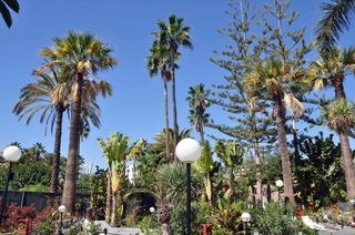 San Valentin & Terraforpark