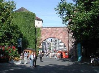 Herzog-Wilhelm - Der Tannenbaum in Munich, Germany