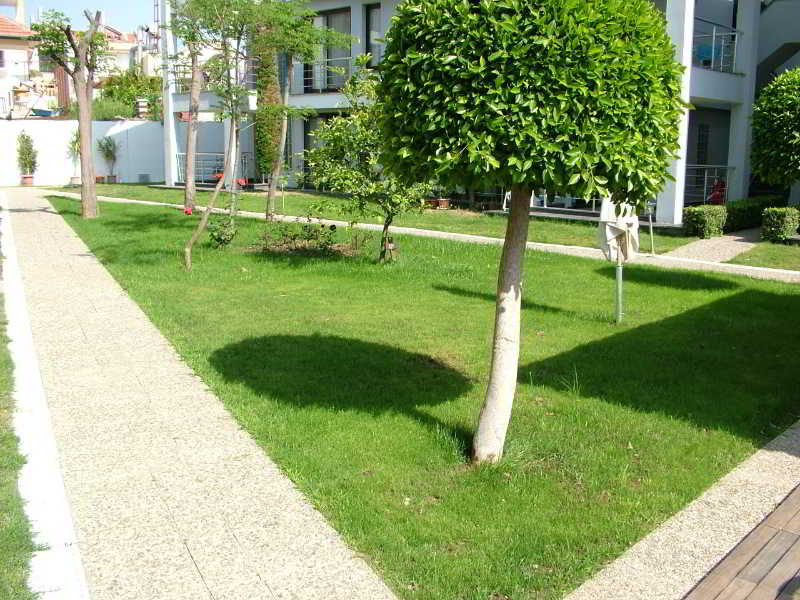 Side Garden Residence