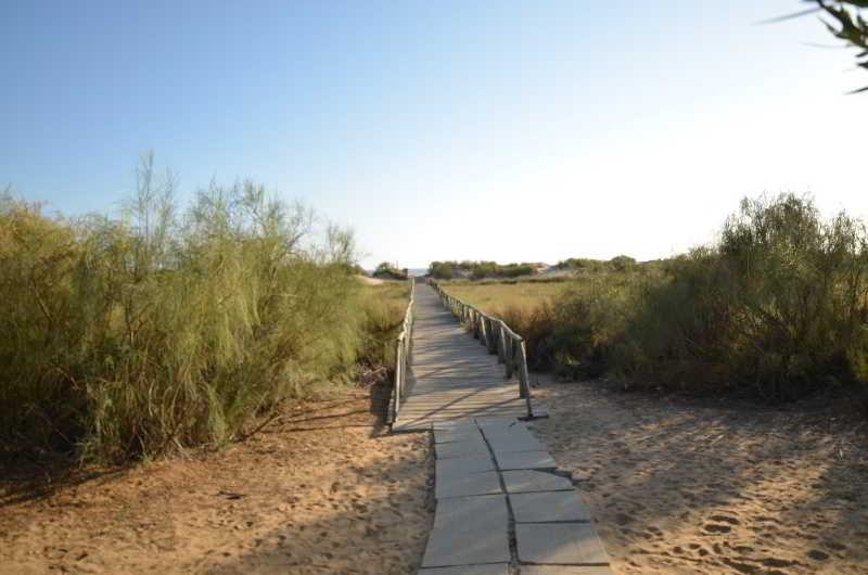 Viajes Ibiza - Leo San Bruno I - II