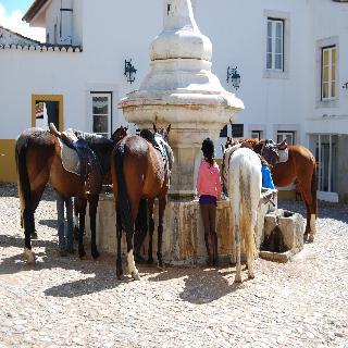 Estalagem Quinta de Santo Antonio
