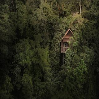 Viajes Ibiza - Permai Rainforest Resort, Kuching