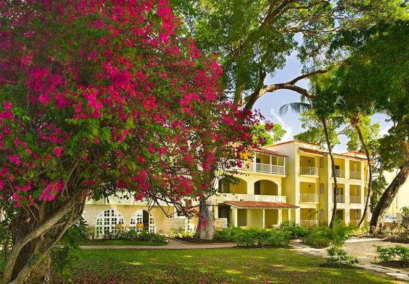 Tamarind in Barbados, Barbados
