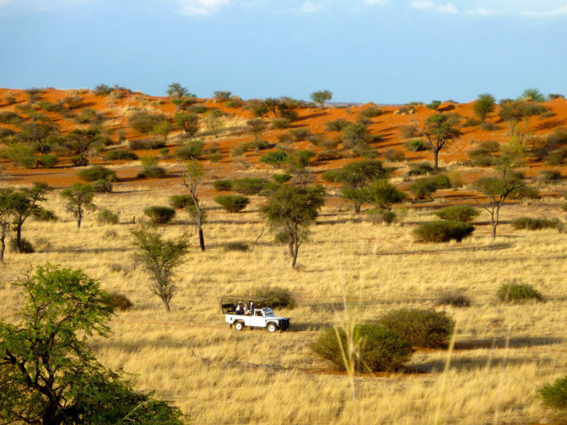 Intu Africa-zebra Kalahari Lodge:  Leisure & Sport: .namibia namibia hotels & resorts windhoek