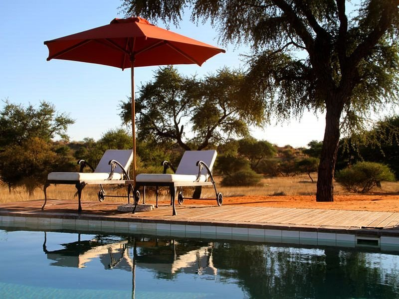 Pool - Intu Africa-zebra Kalahari Lodge