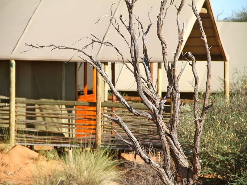 General - Intu Africa Suricate Tented Kalahari Lodge