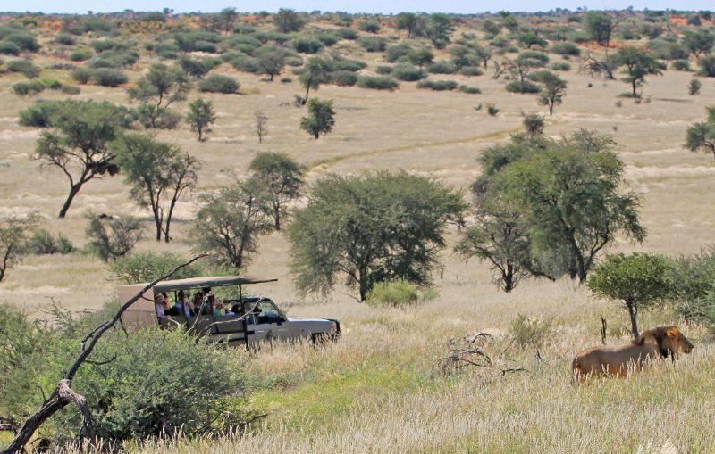Leisure & Sport - Intu Africa Suricate Tented Kalahari Lodge