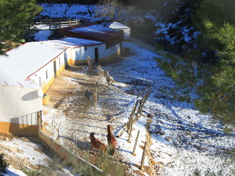 hoteles con piscina exterior en albacete provincia