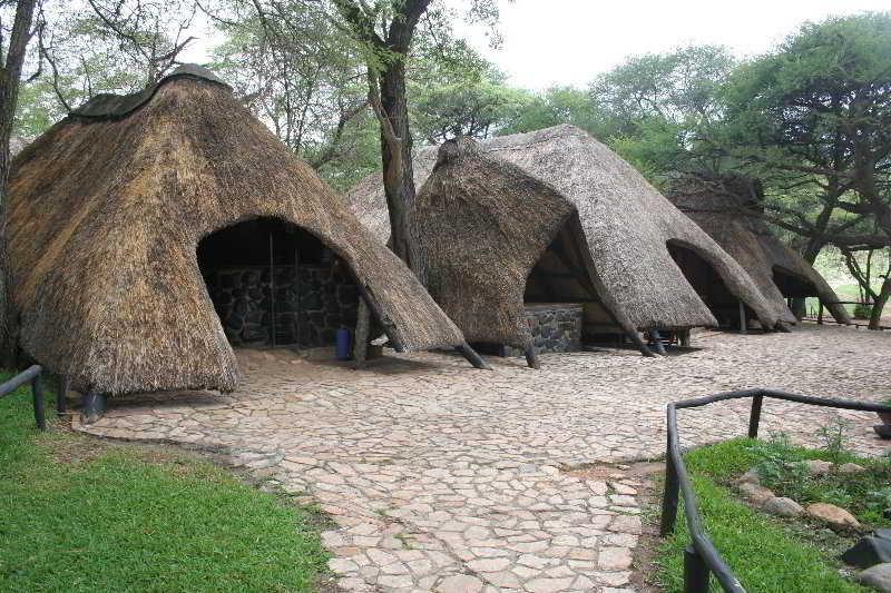 Sikumi Tree Lodge