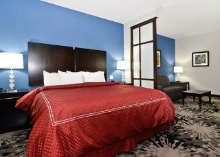 Comfort Suites Greenville Usa Free N Easy Travel Hotel Resorts Reservation Services