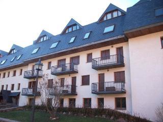 Apartamentos Formigal 3000