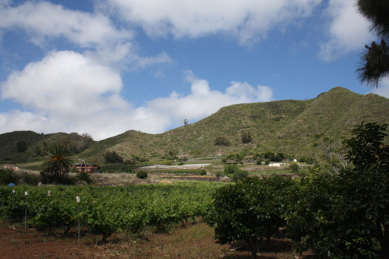 Finca El Vergel Rural