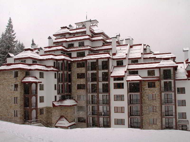 Kamelia in Pamporovo, Bulgaria