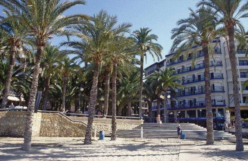 Halconviajes hoteles en benidorm 183 hoteles en super for Hoteles familiares en benidorm