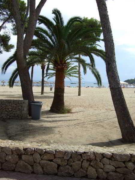 dunas blancas beach mallorca