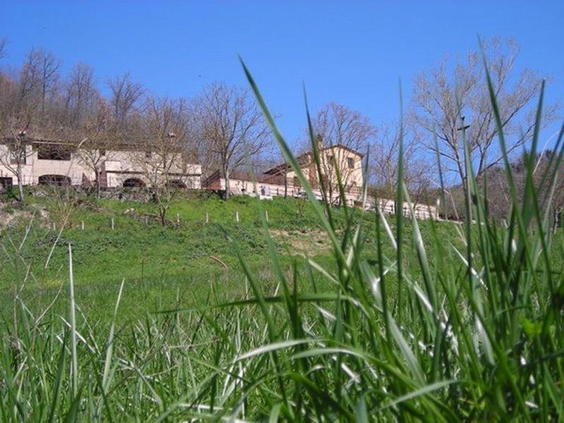 Viajes Ibiza - MSN Farmhouse La Carbonaia