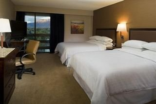 Sheraton Albuquerque Uptown Hotel Nm Room