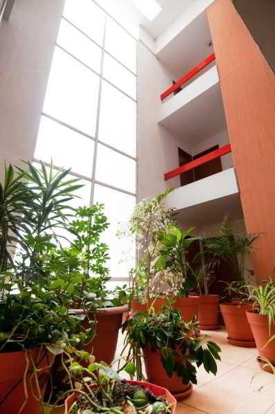 Viajes Ibiza - Suites Futura Plaza del Sol Guadalajara