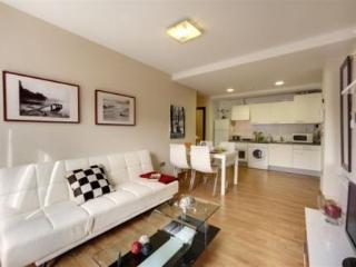 Viajes Ibiza - Bilbao Apartamentos Atxuri