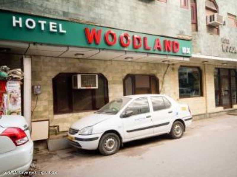 Hotel Woodland Delux