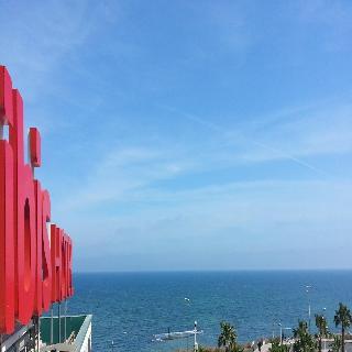 Ibis Alicante