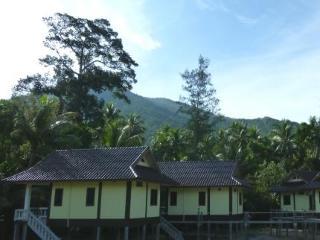 General view