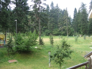 Tes Flora Apartments in Borovets, Bulgaria