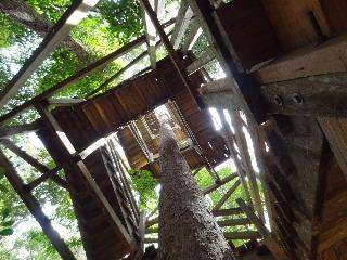 Samboja Lodge