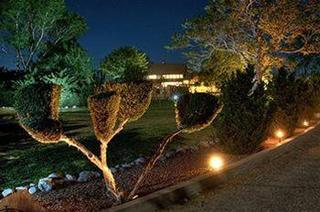 Desert Rose Bed and Breakfast