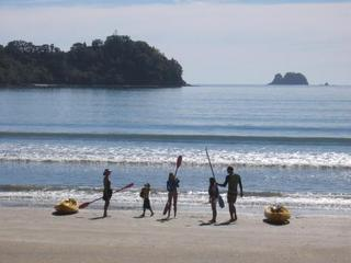 Beachfront Resort - Mercury Bay