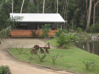 Rainforest Ranch