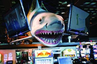 Hollywood Casino Resorts Tunica