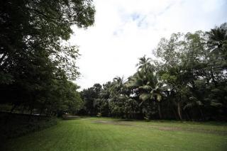 Woodland Resort