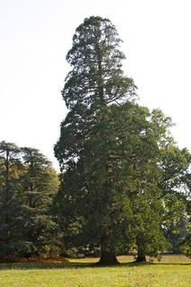 Domaine de Bodeuc