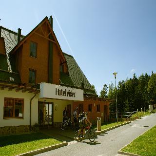 Hotel Videc