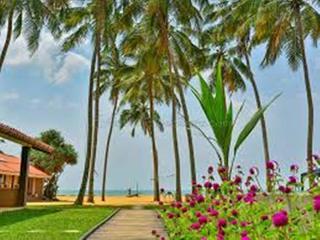 Amagi Beach Marawila