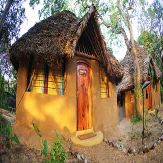 Viajes Ibiza - Distant Relatives Ecolodge & Backpackers
