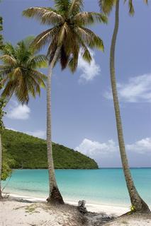 The Westin St. John Resort
