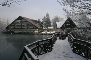 Hotel Bor & Grad Hrib