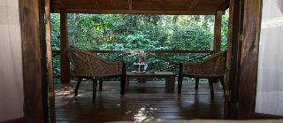 Selva De Laurel