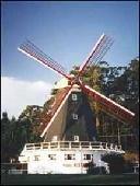 Viajes Ibiza - Comfort Inn Big Windmill