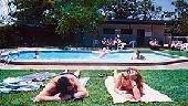 Viajes Ibiza - Toddys
