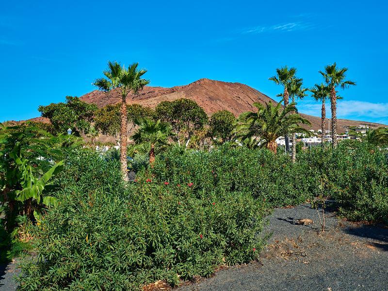 Hipotels Natura Palace - Playa Blanca