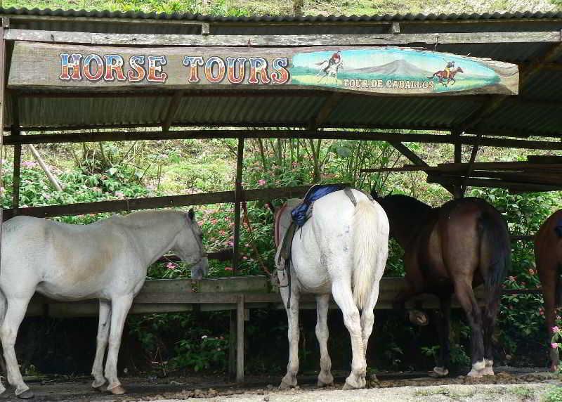 Foto del Hotel Arenal Lodge del viaje paraiso exotico