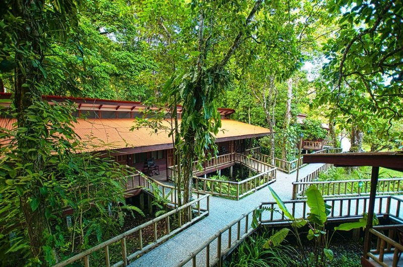 Foto del Hotel Evergreen Lodge del viaje explosion tropical