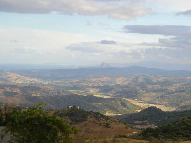 Caballo Andaluz - Gaucín
