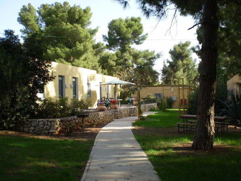 Foto del Hotel Kibbutz Malkiya Travel Hotel del viaje viaje israel antiguo tierra santa